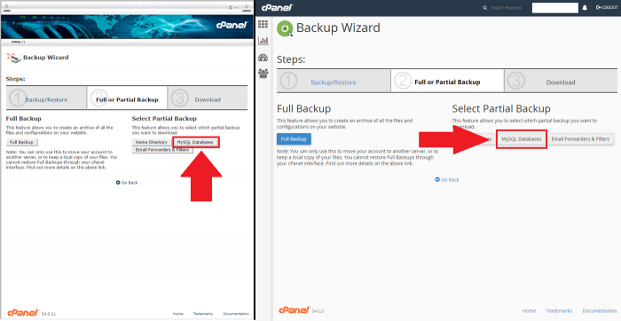 Pasul 4 Selectare MySQL Databases