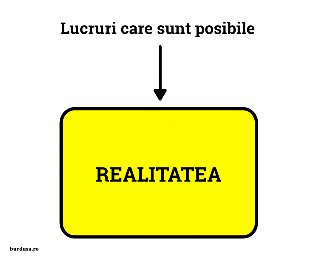 Cutia Realității
