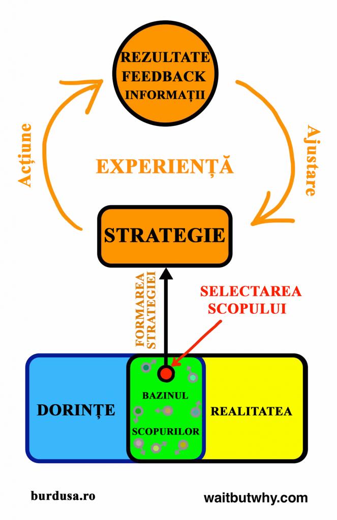 Bucla strategiei