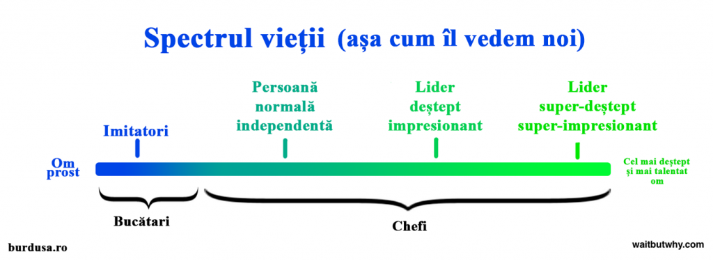 28 Spectrul Bucatar-Chef al vietii eronat